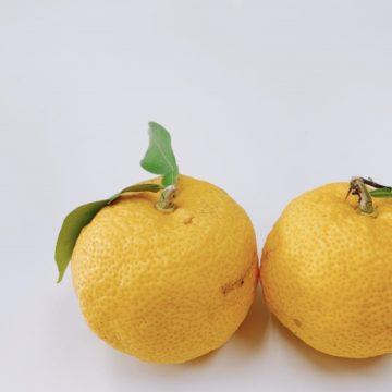 心をほぐす香り♪柚子アロマのご紹介~おまけ☆書くことは脳の活性化の話~