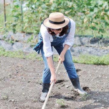 頭と心を耕すアロマ~肥料がしみ込む身体を目指しましょう~