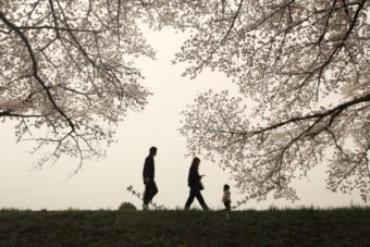 身体のために出来ることはシンプルです~散歩とブロッコリーの話~